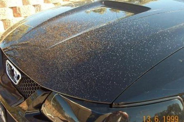 timeless car cleaning services